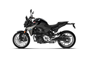 Фото BMW - Мотоциклы Черные Сбоку Белом фоне F 900 R, 2020
