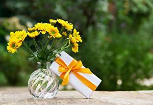 Фотография Букет Вазе Коробки Подарок Ленточка Бантики полевые цветок