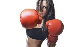 Фото Бокс Белый фон Брюнетка Смотрит Руки Перчатки Удар Спорт Девушки
