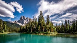 Фотография Канада Горы Парки Озеро Дерево Облака Emerald Lake, Yoho National Park, British Columbia Природа