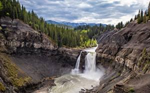 Картинка Канада Водопады Лес Утес Дерево Alberta Природа