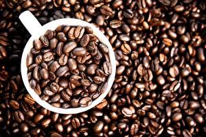 Фото Кофе Чашка Зерно Продукты питания