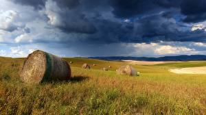 Фотографии Поля Туч Сене Облачно Трава Природа
