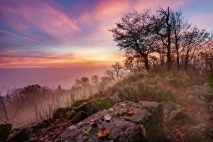 Картинки Германия Утро Рассветы и закаты Камень Деревья Туман