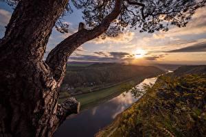Фото Германия Река Рассветы и закаты Деревья Elba River Природа