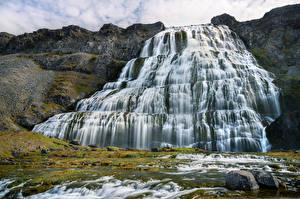 Фото Исландия Водопады Камень Утес Dynjandi waterfall Природа