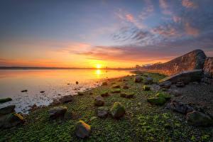 Фотографии Ирландия Побережье Камни Рассвет и закат Солнце Kinvara Природа