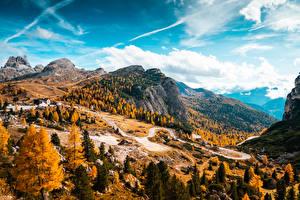 Обои Италия Осенние Лес Горы Дороги Пейзаж Falzarego Pass, Dolomites Природа