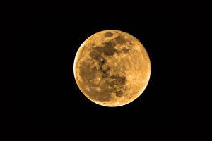 Фотографии В ночи Луна