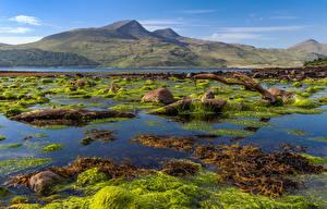 Фотография Шотландия Горы Остров Камень Isle of Mull Природа