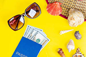 Обои для рабочего стола Ракушки Деньги Доллары Цветной фон Очках