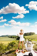 Обои Небо Пикнике Блондинки Трава Шляпа Платья Сзади Облака молодая женщина
