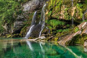 Картинки Словения Водопады Скале Дерева Мха Virje Waterfall Природа