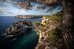 Обои Испания Мальорка Майорка Берег Море Дерева Скала
