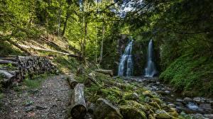 Обои Камни Водопады Бревно Мха Природа