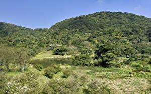 Фотография Тайвань Озеро Лес Холмы Кусты Sanzhi District