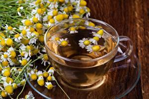 Фотографии Чай Ромашки Чашке Блюдца Продукты питания