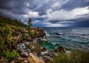 Картинка США Озеро Камень Скала Дерево Lake Tahoe Природа