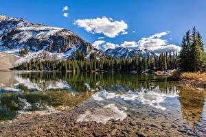 Фотография США Гора Озеро Пейзаж Дерева Отражении Облако Alta Lakes, Colorado Природа