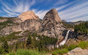 Фото Штаты Гора Парк Калифорнии Йосемити Утес Дерево Природа