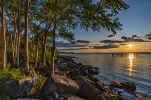 Картинка Штаты Рассветы и закаты Берег Камни Залива Солнце Деревьев Brooklyn Природа