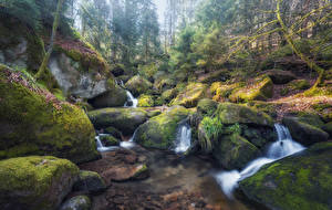 Фото Водопады Камни Мох HDRI Ручей Природа
