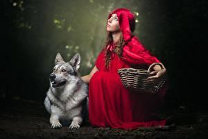 Фотографии Волк Красная Шапочка Корзины молодая женщина Животные