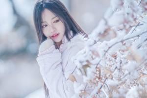 Фотография Азиаты Боке Ветки Снегу Взгляд молодые женщины