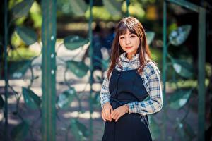 Картинки Азиатки Поза Смотрят Размытый фон девушка