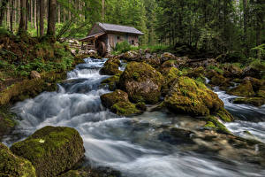 Фотография Австрия Леса Камень Реки Водопады Мох Водяная мельница Golling waterfall Природа