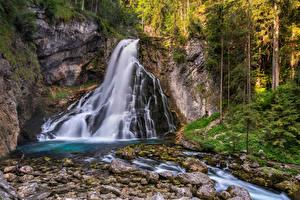 Обои Австрия Лес Камень Водопады Речка Дерево Golling waterfall Природа