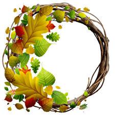 Фотографии Осенние Листва Белый фон Шаблон поздравительной открытки Венок Природа