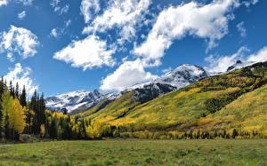 Обои Осенние Гора Лес Луга Америка Aspen, Colorado Природа