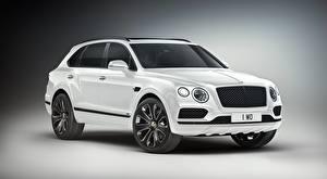 Картинки Bentley CUV Белая Металлик Сером фоне Дорогой Bentayga V8 Design Series, 2019 автомобиль