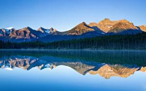 Фото Канада Озеро Горы Лес Парк Банф Отражается Herbert Lake, Alberta Природа