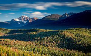 Картинки Канада Гора Леса Парки Джаспер парк Alberta, Rocky Mountains