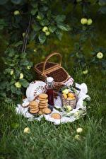 Картинки Печенье Абрикос Яблоки Пикнике Корзина Бутылка Еда