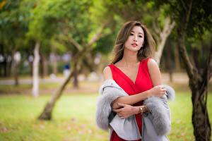Картинка Платье Размытый фон Смотрят молодые женщины