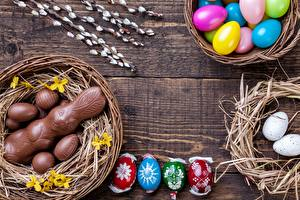 Обои Пасха Шоколад Зайцы Яйцо Гнезда Пища
