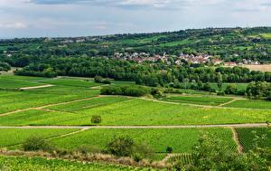 Фотографии Франция Дома Поля Село Santenay, Bourgogne Природа