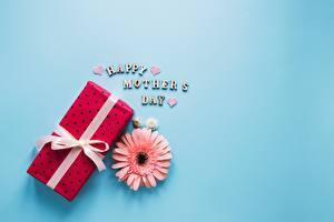 Обои Герберы День матери Подарки Цветной фон Цветы