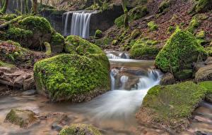 Фото Германия Лес Камень Водопады Мха Ручеек Butzerbach valley Природа