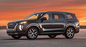 Фотографии Hyundai Сбоку Внедорожник Металлик Palisade US-spec, 2019 автомобиль