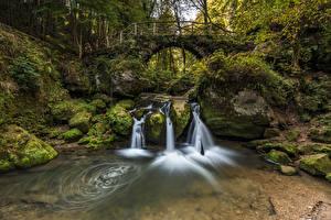 Фотография Люксембург Леса Камень Водопады Мосты Мха Арка Дерево Ручей Schiessentümpel Природа