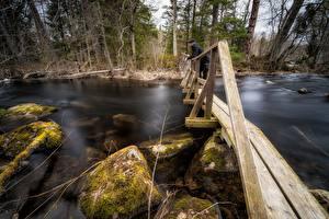Фото Реки Камни Мосты Мужчина Мха Деревянный Природа