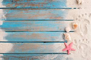 Обои Ракушки Морские звезды Доски Песке След Шаблон поздравительной открытки