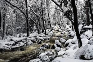 Фото Камень Парки США Йосемити Снегу Деревья Ручеек Калифорнии Bridalveil Creek Природа