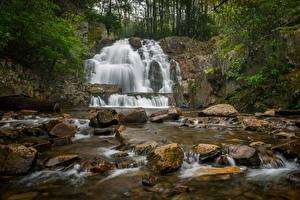 Картинка Камень Водопады США Pennsylvania, Hawk Falls, Hickory Run State Park Природа