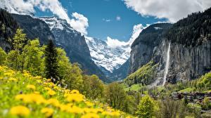 Картинки Швейцария Водопады Горы Пейзаж Деревьев Утес Альп Staubbach Fall, Lauterbrunnen, Canton Bern Природа