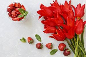 Картинка Тюльпан Клубника Красный Цветы